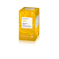 ökotopia GmbH Ingwer Lemon Teebeutel